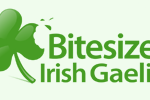 Review: Bitesize Irish Gaelic